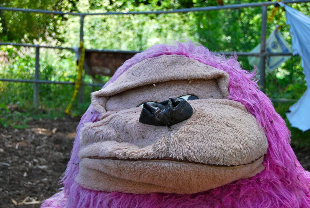 photo of a stuffed animal purple gorilla