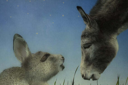 illustration of a donkey and a rabbit looking at each other