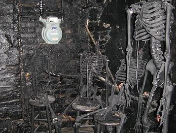 photo of human skeletons in a basement