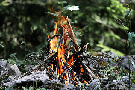 photo of a campfire