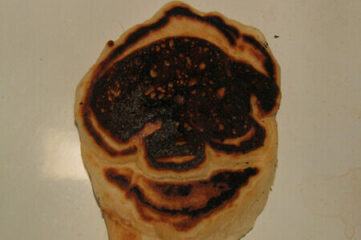 photo of a burnt pancake