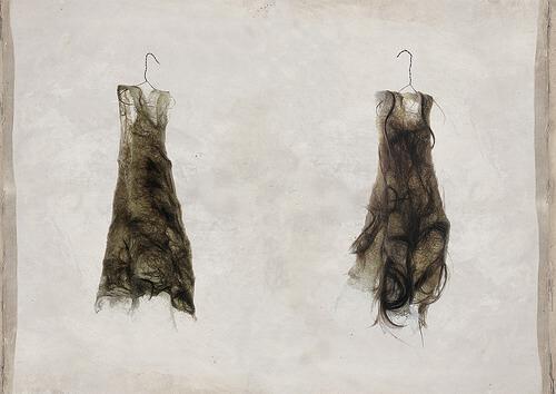 Haarkleid * Coat of Hair