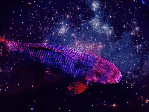 cosmic fish