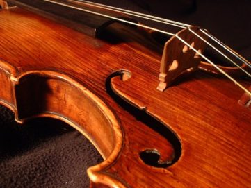 photo of violin