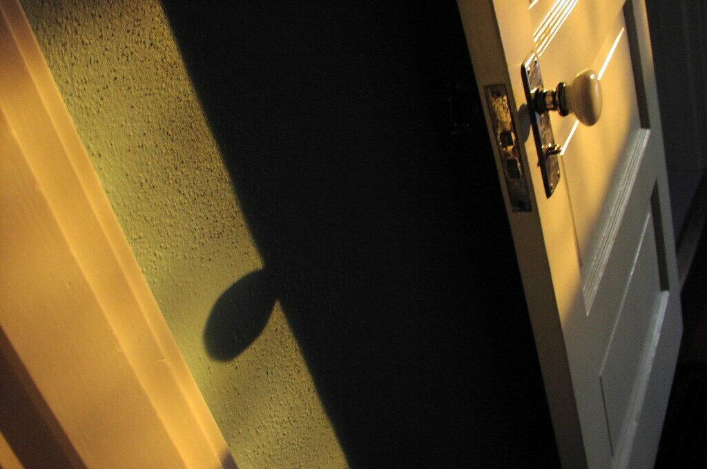 photo of a door ajar with shadowy interior