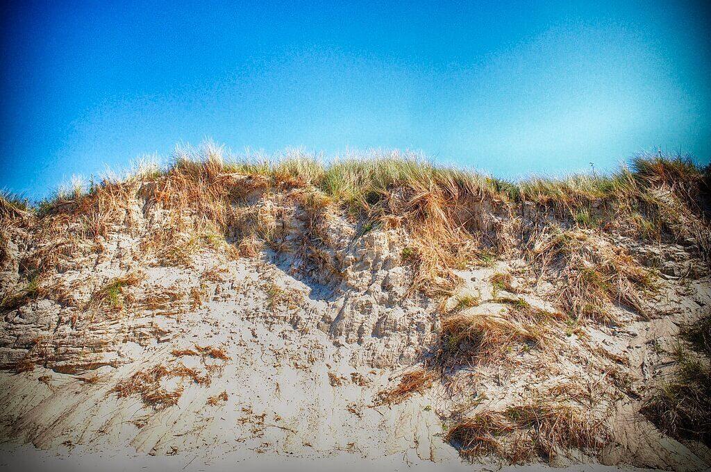 Dune at beach under a blue sky