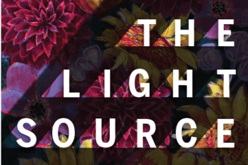 The Light Source book cover